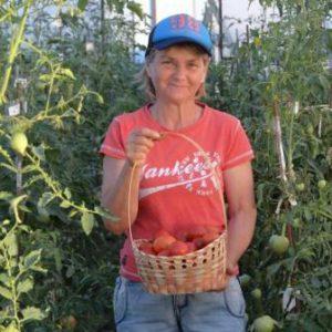 м-храмушина-Е.-куратор-проекта-мичурин-томаты